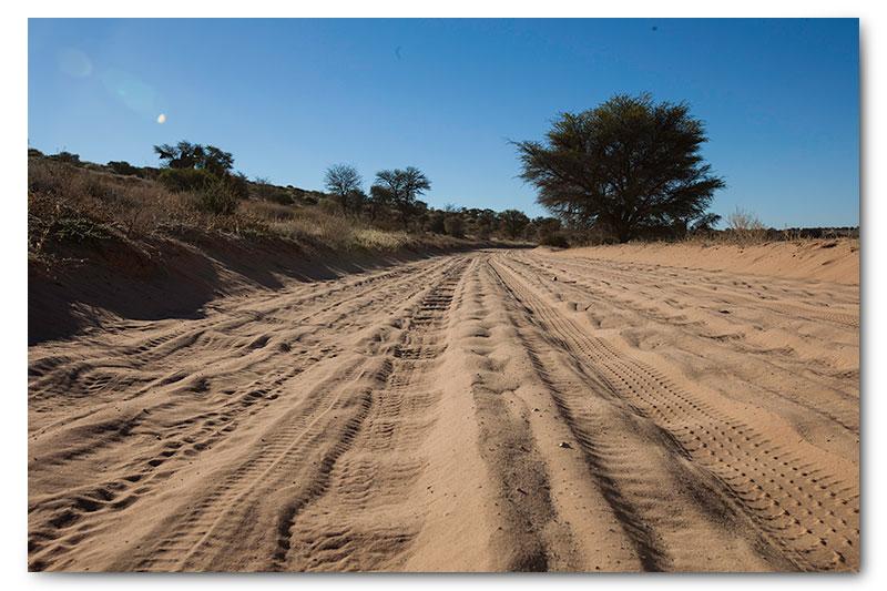 kgalagadi roads corrugations