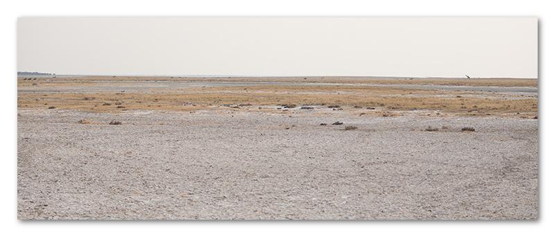Peter Dawson Photography - etosha vista namibia