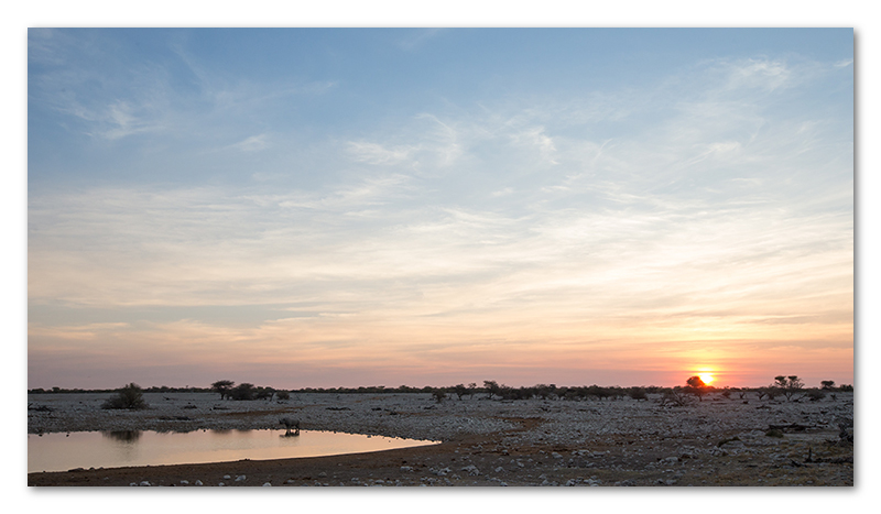 Peter Dawson Photography - etosha sunset waterhole black rhino